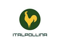 Italpolina
